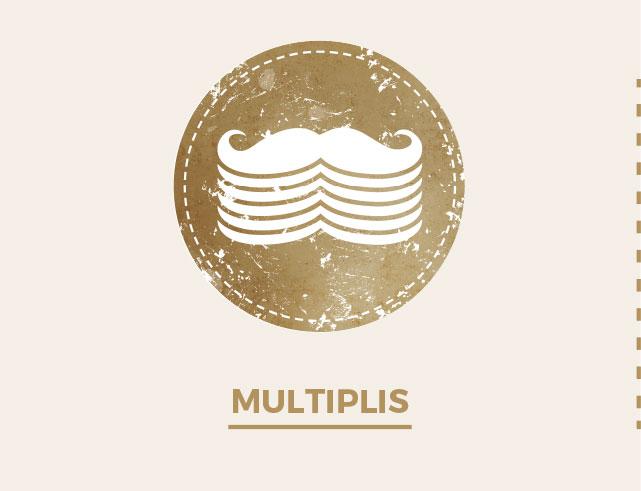 Multiplis